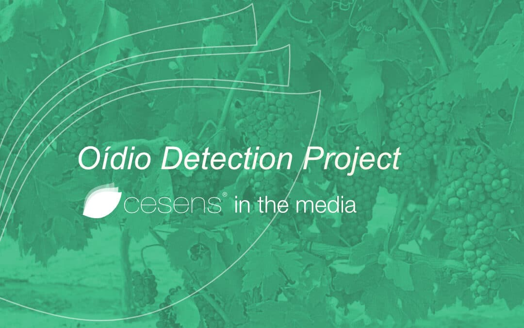 Oídio Detection Project. Cesens in the media