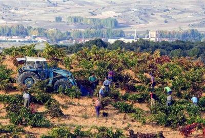 Altos de Ontañón