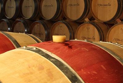 Mazuela Wineyard