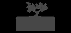 medievo-logo