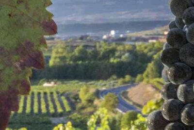 Valdemar Winery