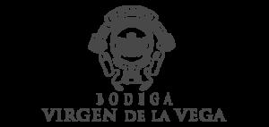 virgenvega-logo