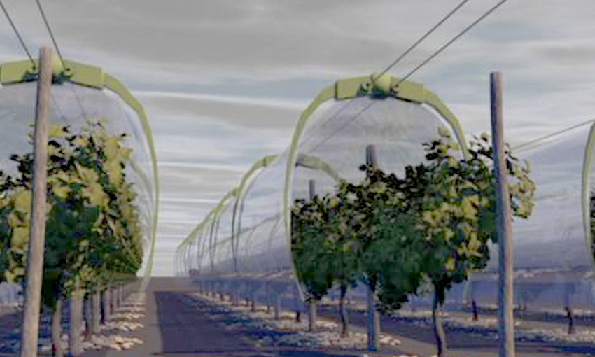 A tunnel that protects vineyards from rain and diseases will be tested in France